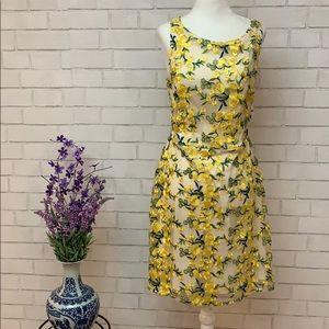 Embroidered Overlay Mini Dress